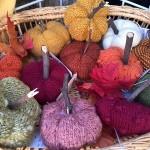 Zara's knitted pumpkin patch