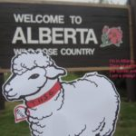 Alice crosses Canadian border