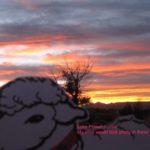 Alice admiring Lake Powel sunset