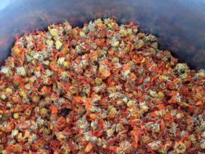 Dried Cosmos for dye bath